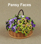 Pansy Faces